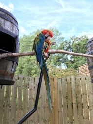 birdland-bourton-cotswolds-concierge (1)