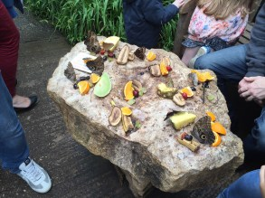 stratford-butterfly-farm-cotswolds-concierge-21