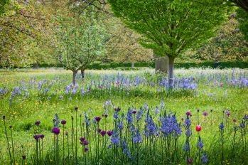 highgrove-gardens-cotswolds-concierge-2