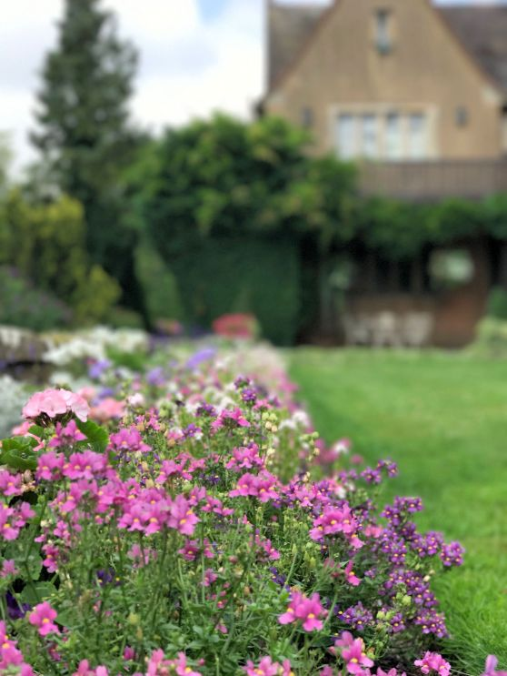mallory-court-garden-cotswolds-concierge (8)