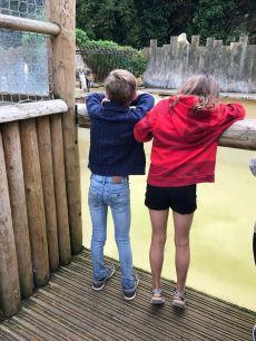 birdland-bourton-on-the-water-cotswolds-concierge (5)