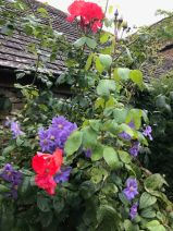calcot-manor-family-friendly-hotel-cotswolds-concierge- (54)