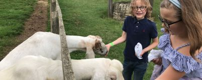 cotswold-farm-park-cotswolds-concierge-summer (23)