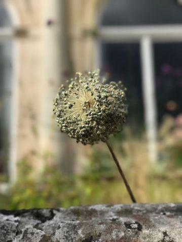 cowley-manor-kids-summer-cotswolds-concierge (23)