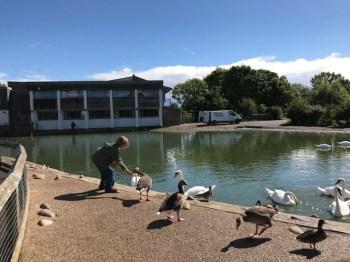 slimbridge-wetlands-centre-cotswolds-concierge (24)