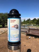 slimbridge-wetlands-centre-cotswolds-concierge (29)