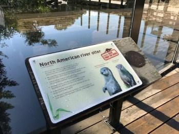 slimbridge-wetlands-centre-cotswolds-concierge (42)