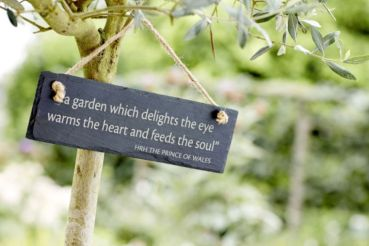 highgrove-garden-champagne-afternoon-tea-cotswolds-concierge (11)