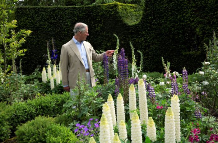 highgrove-garden-champagne-afternoon-tea-cotswolds-concierge (6)