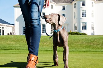 tewkesbury-park-hotel-spa-golf-cotswolds-concierge (20)