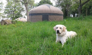 campden-yurts-chipping-campden-cotswolds-concierge (1)