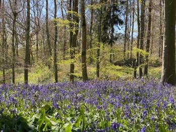 road-trip-northleach-bibury-yanworth-winchcombe-cotswolds-concierge-staycation (27)