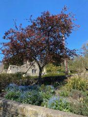road-trip-northleach-bibury-yanworth-winchcombe-cotswolds-concierge-staycation (32)
