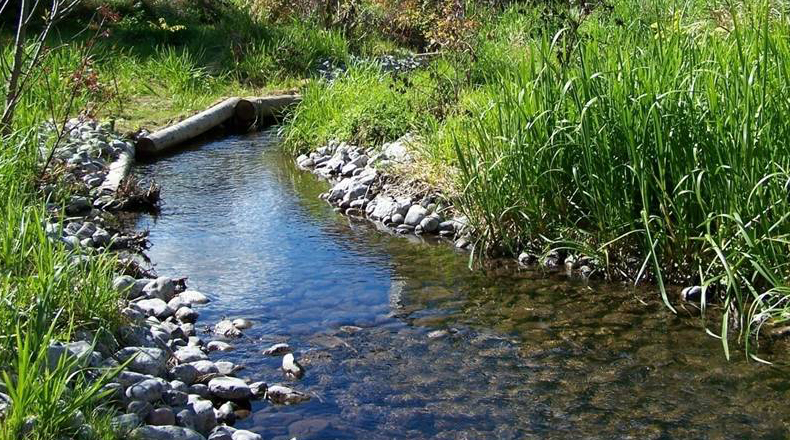 Step into Nature with Watershed Explorations