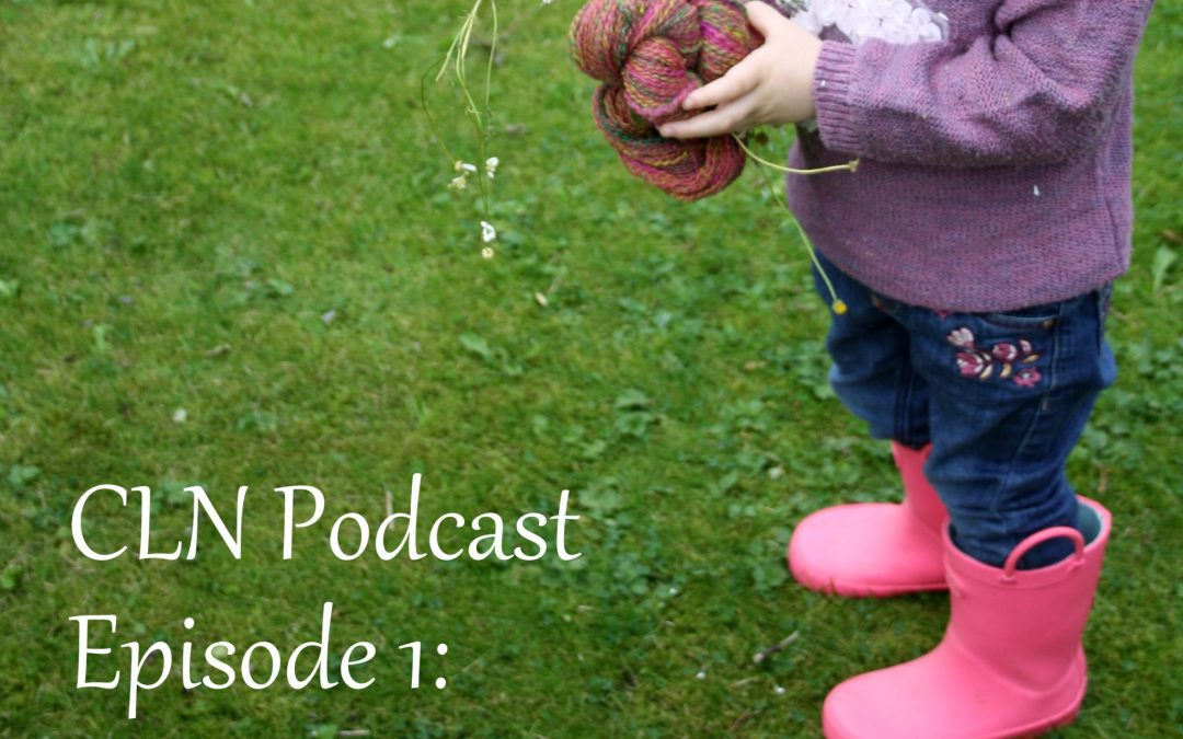 CLN Podcast Episode 1: A Few Square Feet