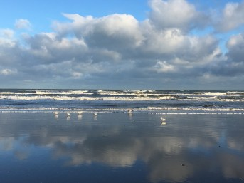 photo-comp-2017-winter-on-laytown-beach