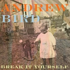 Andrew Bird – 'Break It Yourself'