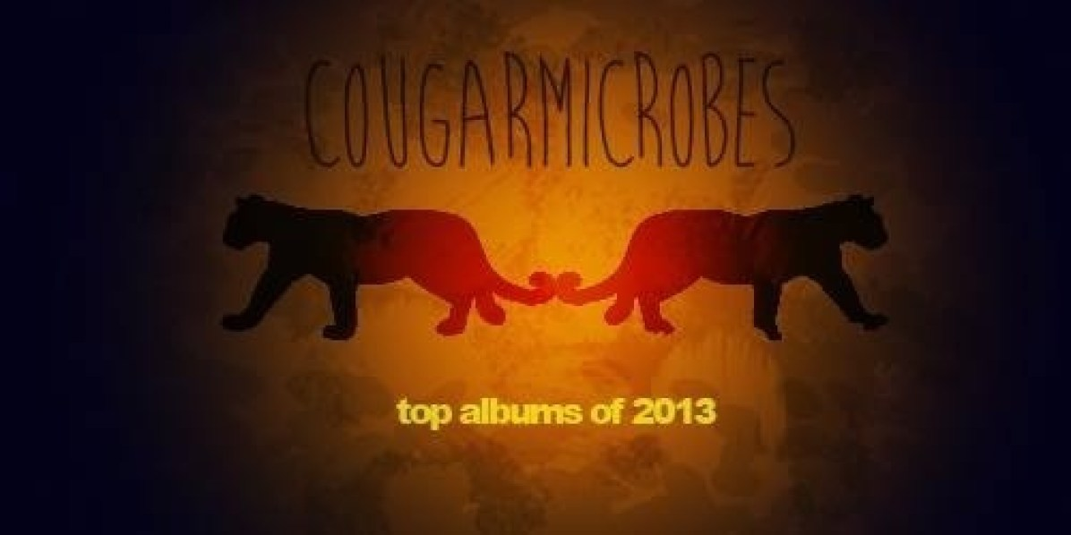 2013: The Year in Music