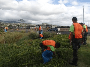 kapolei clean up