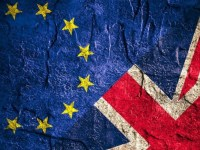 The Brexit Verdict: Failure Of The Idea Of Common Markets