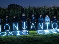 The British Government Has Colluded With Monsanto And Should Be Held Accountable In The International Criminal Court