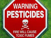 Agrochemicals And The Cesspool Of Corruption: Dr. Mason Writes To The US EPA