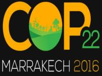 Movement At Marrakech: Climate Change In The Shadow Of Denial