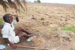 Will Farmer Producer Organizations address Agrarian distress?