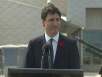 Trudeau Poodles For Empire