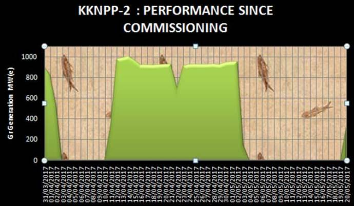kknp2-2