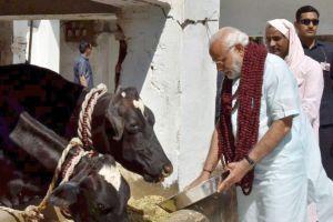 Past And Future: Evaluating Three Years Of Modi Raj