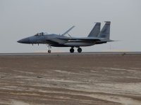 Qatar Signs $12 Billion Deal To Buy 36 F-15 Jets As US Warships Arrive In Qatar For Military Exercise