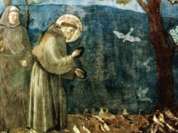 We Need Their Voices Today: Saint Francis of Assisi