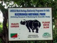 Human Rights Violations in Kaziranga National Park
