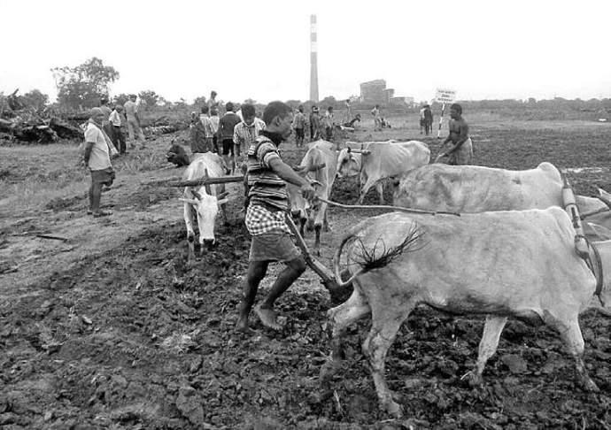 ploughing-land-farmer