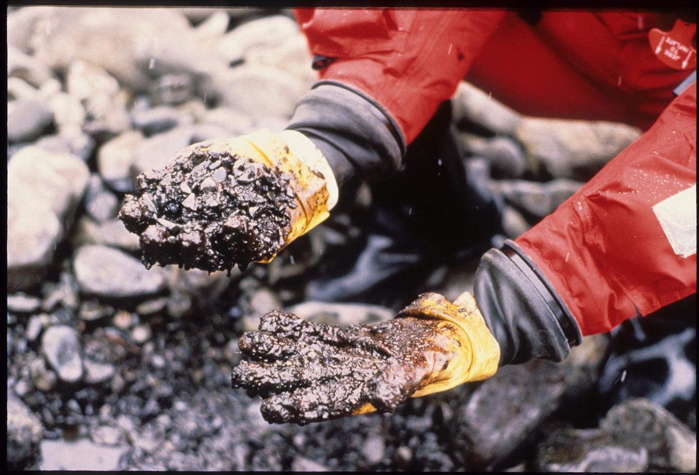 Spill Exxon Valdez Bp Vs