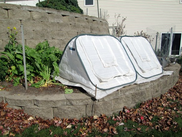 Pop-up greenhouse tent