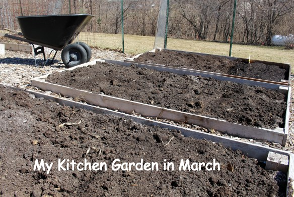 Prepping the raised beds