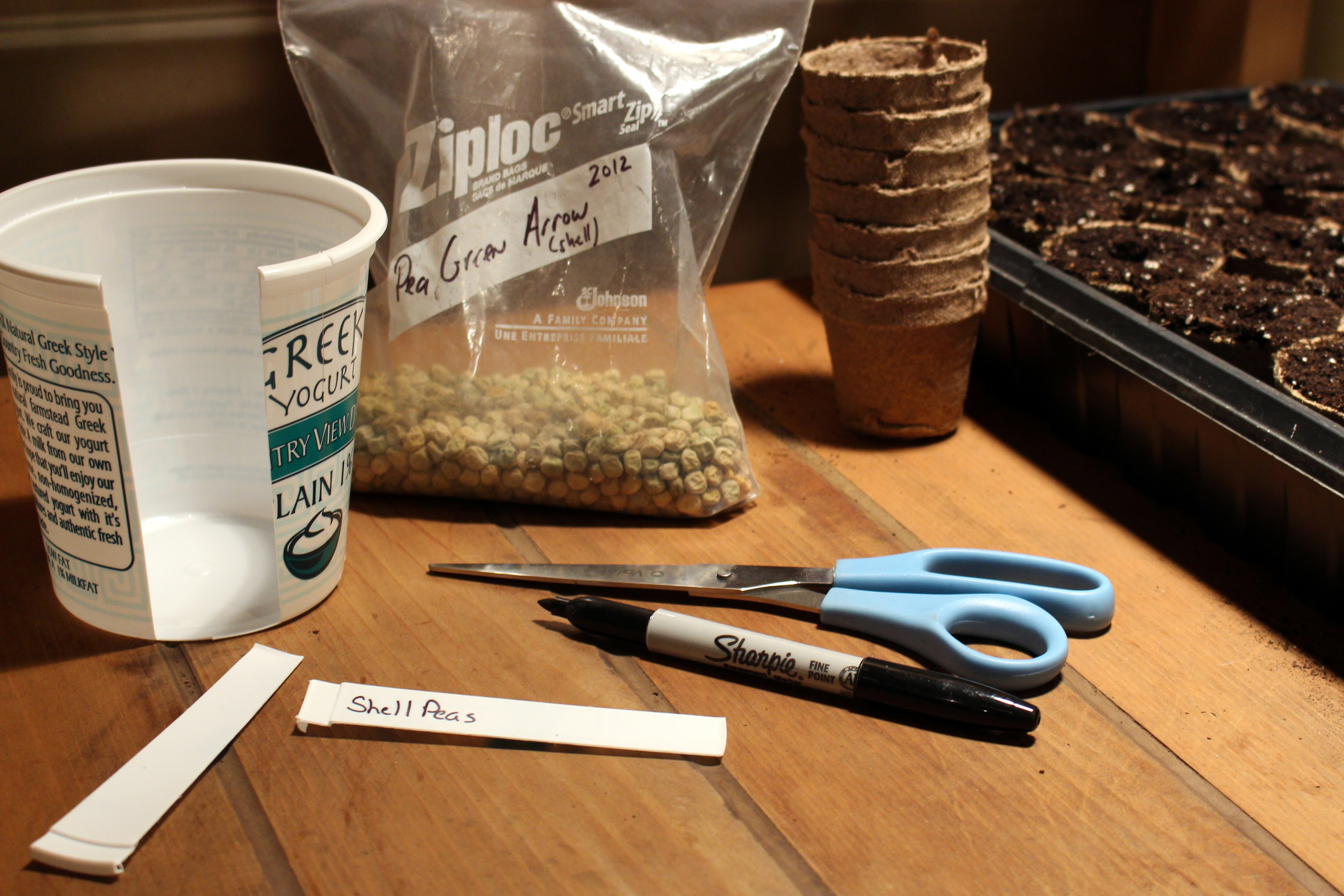 10 Things That Can Be Recycled For The Gardencounting My