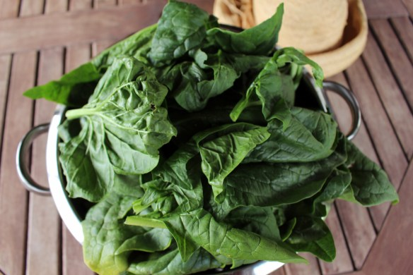 Spinach from the kitchen garden