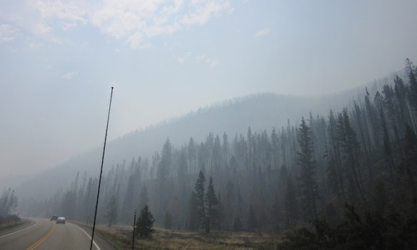 Forest fire in Sublette County, Wyoming