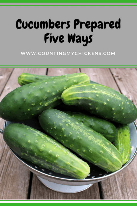 Five ways for using up those excess cucumbers in your garden or CSA box.