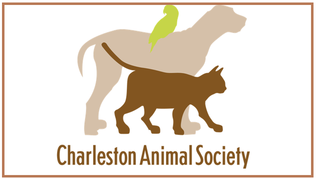Charleston Animal Society_96140