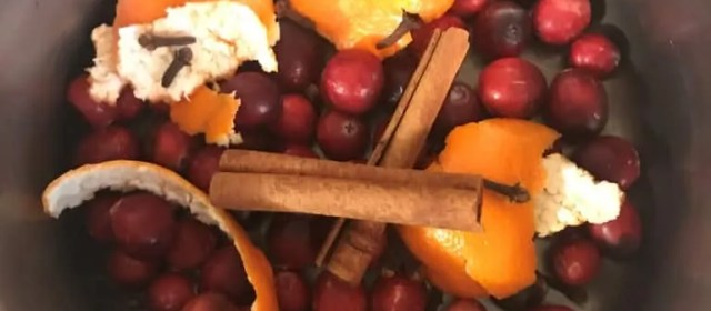 Homemade Holiday Potpourri