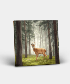 Country Images Personalised Custom Ceramic Tile Tiles Scotland Highland Collection Deer Roebuck Buck Roe Stag Nature Wildlife Gift Gifts