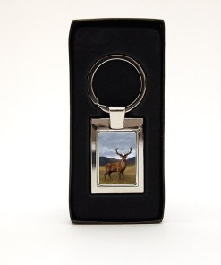 Highland Collection - Lozenge Keyring (Stag)