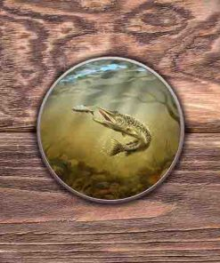 Round Tin (Pike) Personalised Gift
