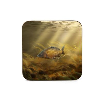 Square Coaster (Common Carp) Personalised Gift