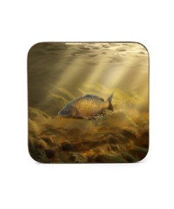 Square Coaster (Common Carp) Personalised Gift