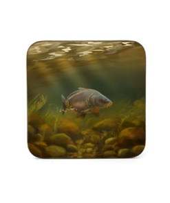 Square Coaster (Mirror Carp) Personalised Gift